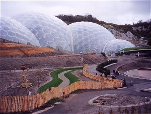 Eden Project - Trellis Fencing